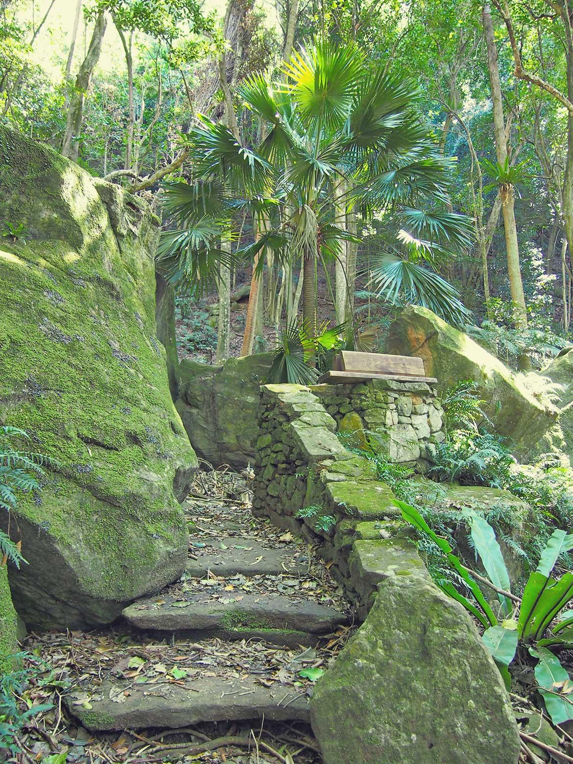 Beautiful outdoor chapel in the Australian rainforest.